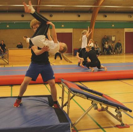 Gymnastikudvalget arbejder på højtryk for at få næste sæsons program færdig