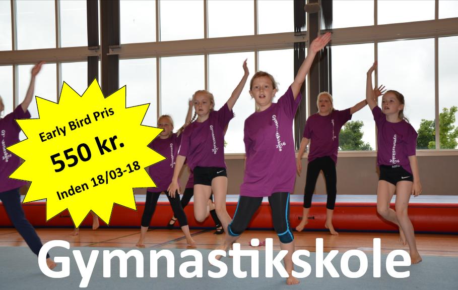 Gymnastikskole 2018 – Tilmeld dig nu!