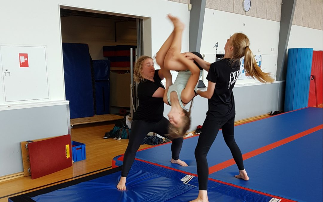 Gymnastiksæsonen 2018/19 – se programmet her!